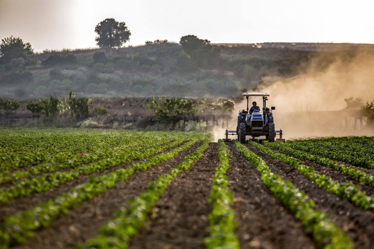 Farmer riding agriculture machine through field of crops.