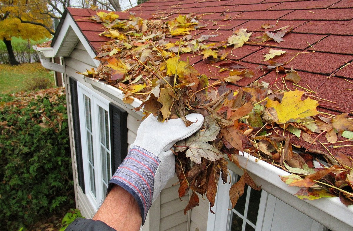 Gloved hand cleaning leaves out of the gutter.