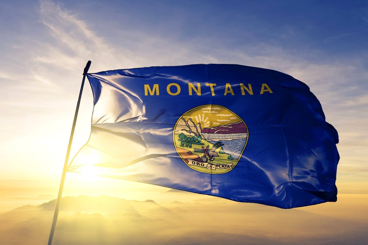 The Montana state flag flying in front of a sunny sky.