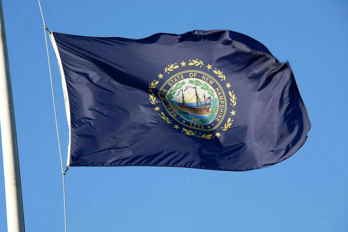 The New Hampshire state flag fluttering in front of a blue sky.