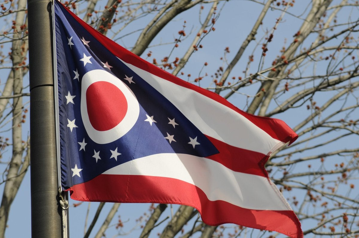 The Ohio state flag flying in front of tree branches.