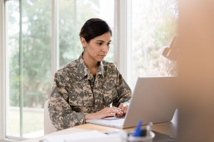 Woman Vet Looking At Laptop