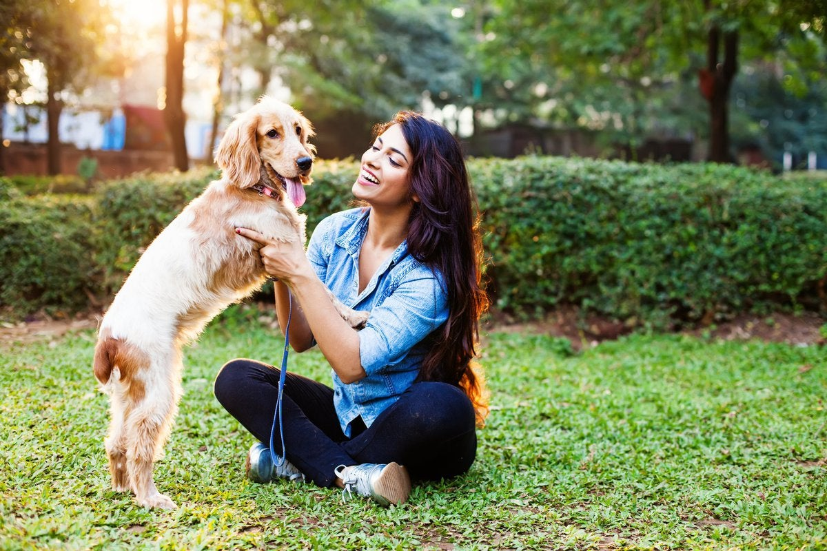 A woman sitting in a sunny park with a dog.