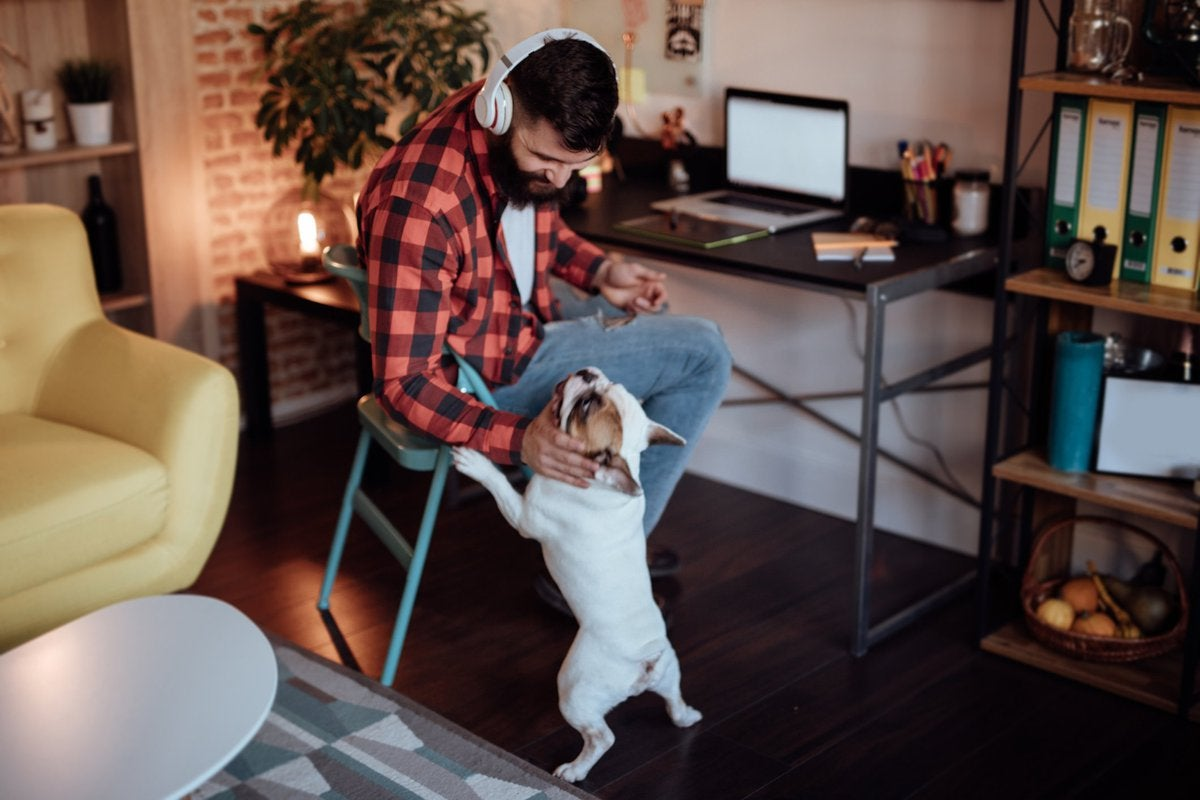 A man wearing headphones and working from a desk in his living room while petting his dog.