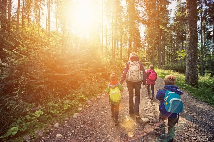 A mom and three kids wearing backpacks and hiking through a sunny forest.