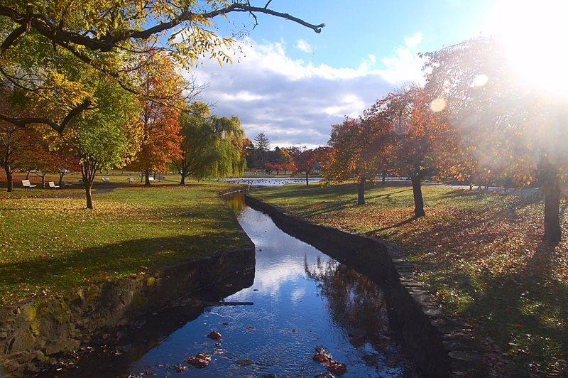 River and park in Passaic, New Jersey.