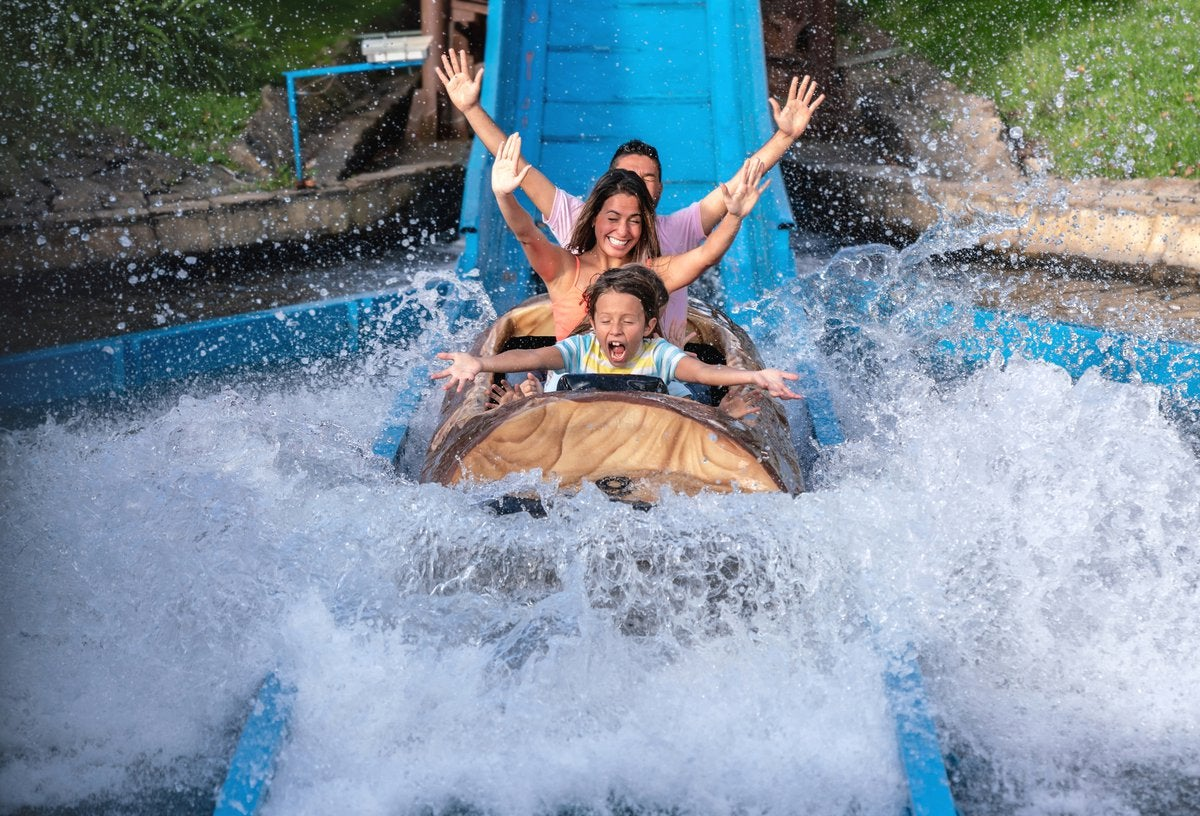 A family cheering while splashing into the water on a theme park log ride.