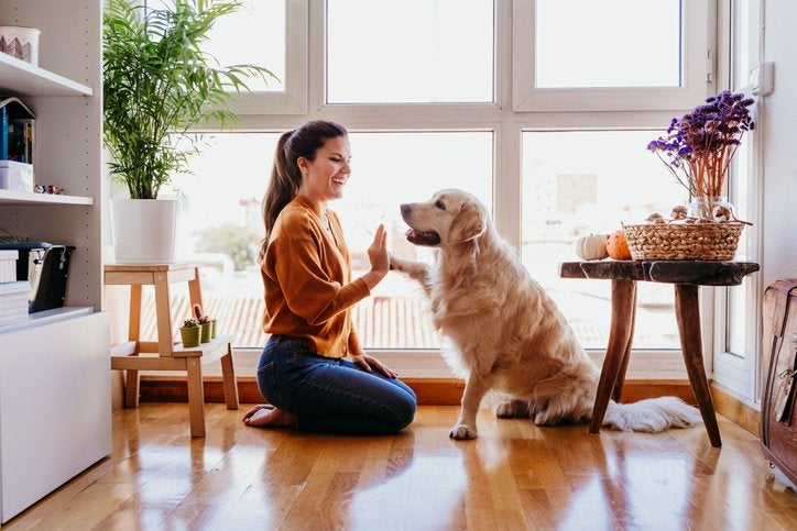 A smiling woman sitting on the hardwood floor of her living room and playing with her dog.