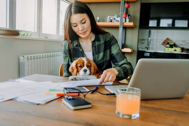 A woman working at home with her dog in her lap.