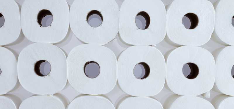 Lots of rolls of toilet paper in stacked rows.