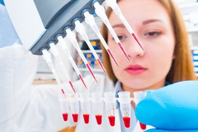 A biotech lab technician using multiple pipettes to load blood samples into test tubes.