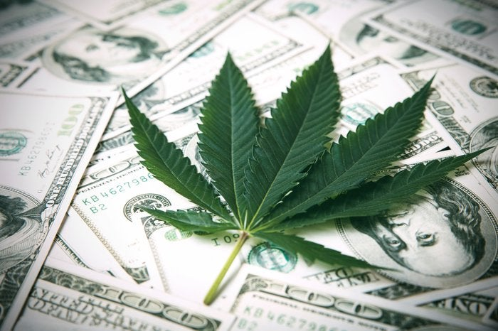 Fresh green marijuana leaf lies atop a loose pile of cash.
