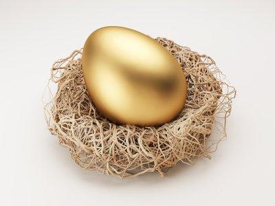 Golden egg in a nest.