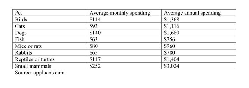 Average Cost Of Owning Various Pets