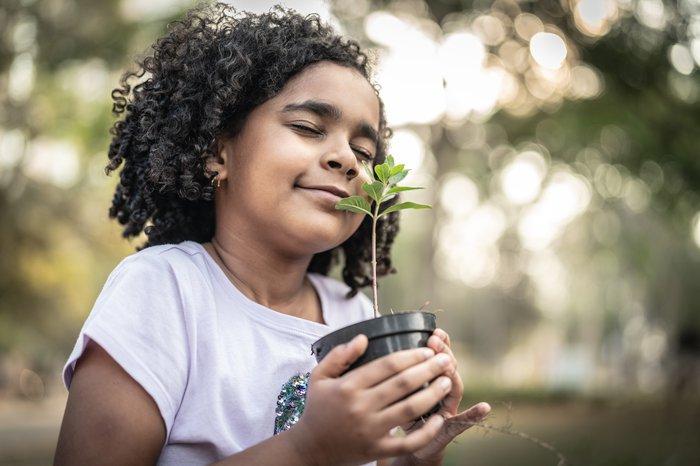 little girl enjoying a green plant in a pot