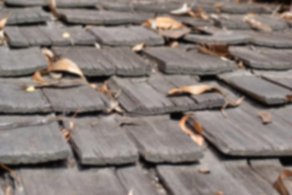 Roof with leaves