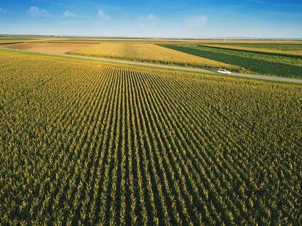 Farmland field