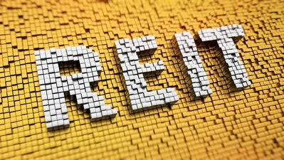REIT cubed spelling gold and white