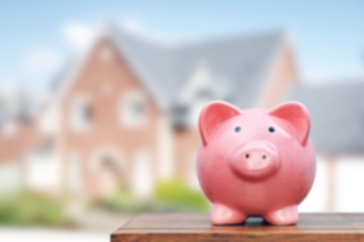 Personal Savings Piggy Bank For Home