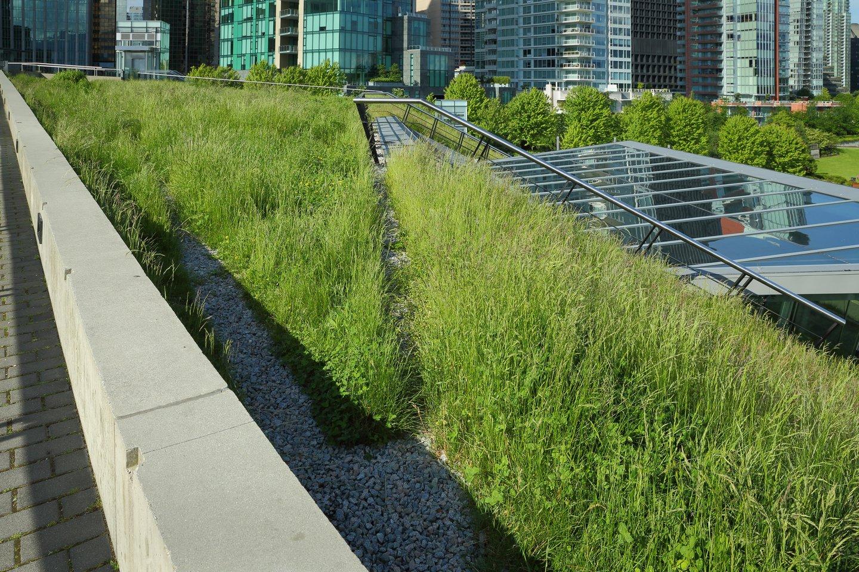 sustainable_architecture.jpg
