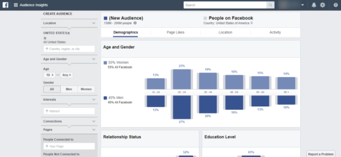 Facebook's audience insights tool
