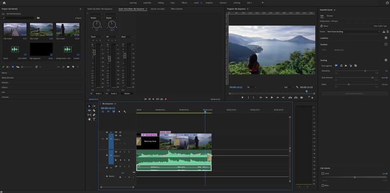 Audio workspace in Premiere Pro.