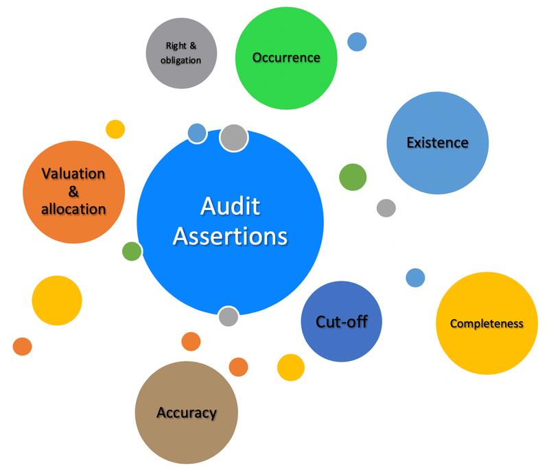 An audit assertions graph showing various categories.