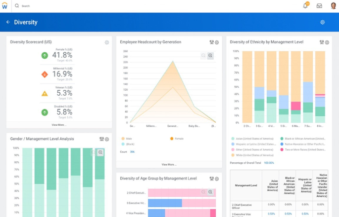 Workday's diversity dashboard.