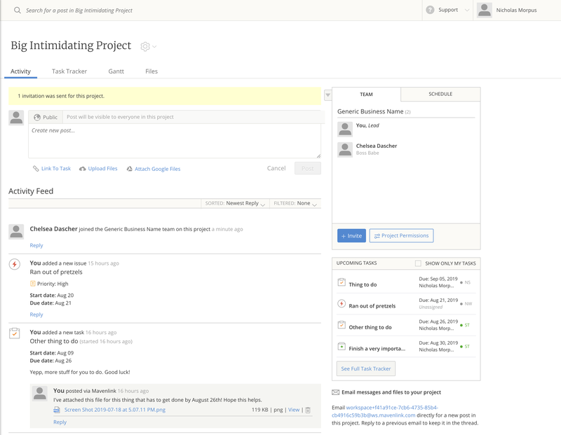 Mavenlink project dashboard