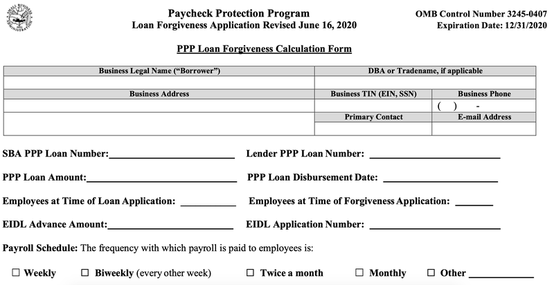The top of an SBA PPP forgiveness application.