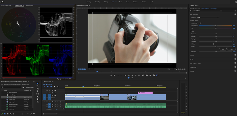 The color workspace in Adobe Premiere Pro.