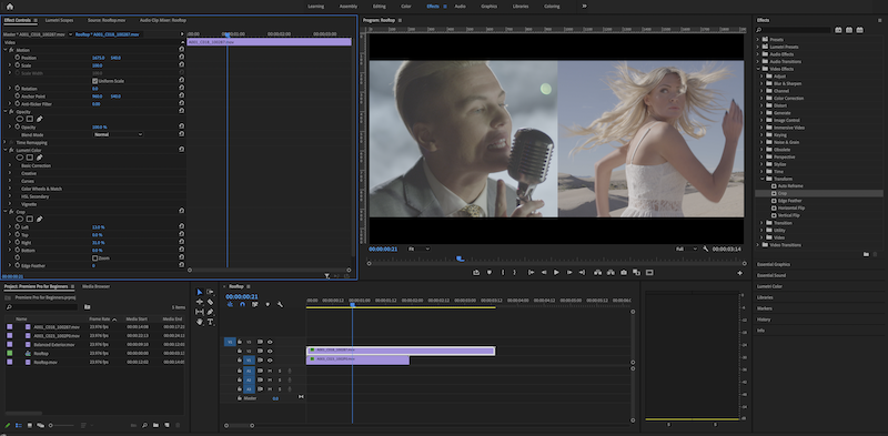 A screenshot of the editing workspace in Premiere Pro.