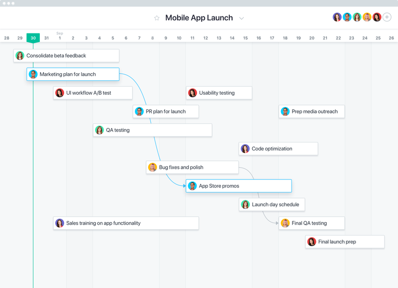 Asana screen of a Gantt chart with details on project name and project owner for project planning.