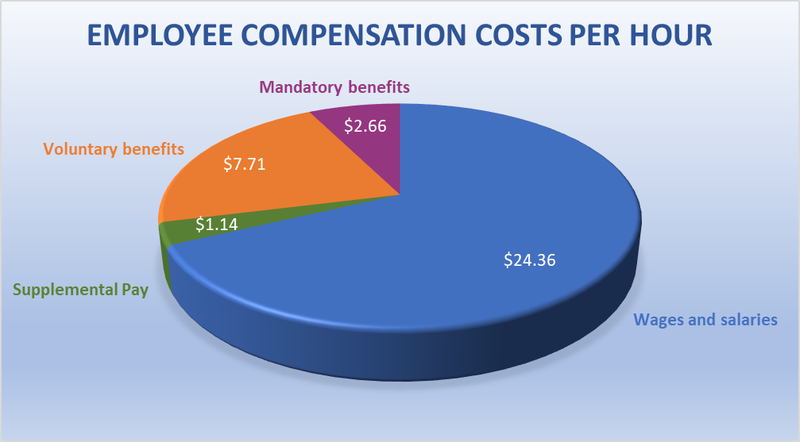 A pie chart of compensation broken down by wages and benefits.