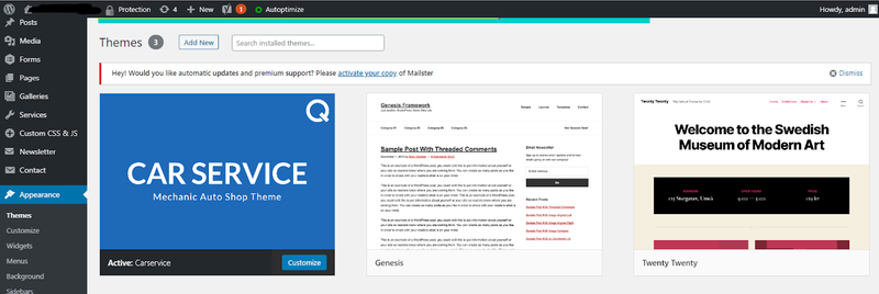 WordPress screen showing theme previews with option to activate a new theme.