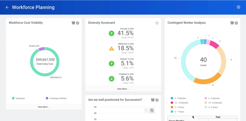 Workday screen showing statistics for HR goals including a piechart for cost, a diversity scorecard, and a pie chart for contingent workforce analysis.