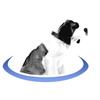 bernie portal logo.png
