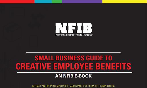 Screenshot of an NFIB e-book.