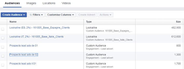 Facebook's audience tab with create audience feature selected displaying list of lookalike audiences