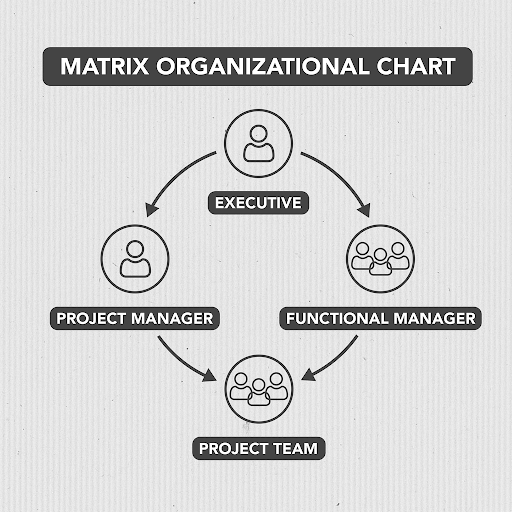 Image of matrix organizational chart