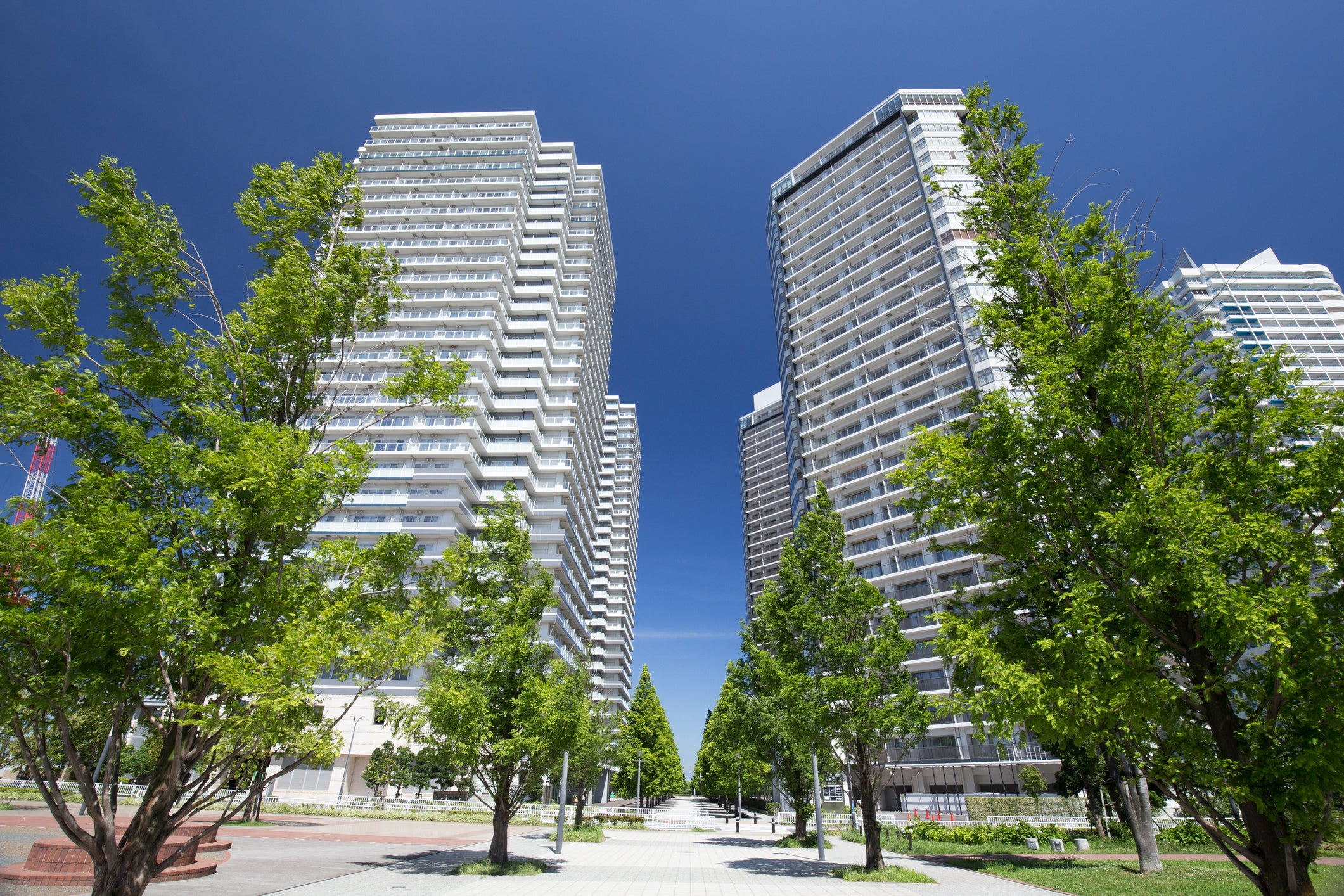 Several tall apartment buildings on a tree-lined street.