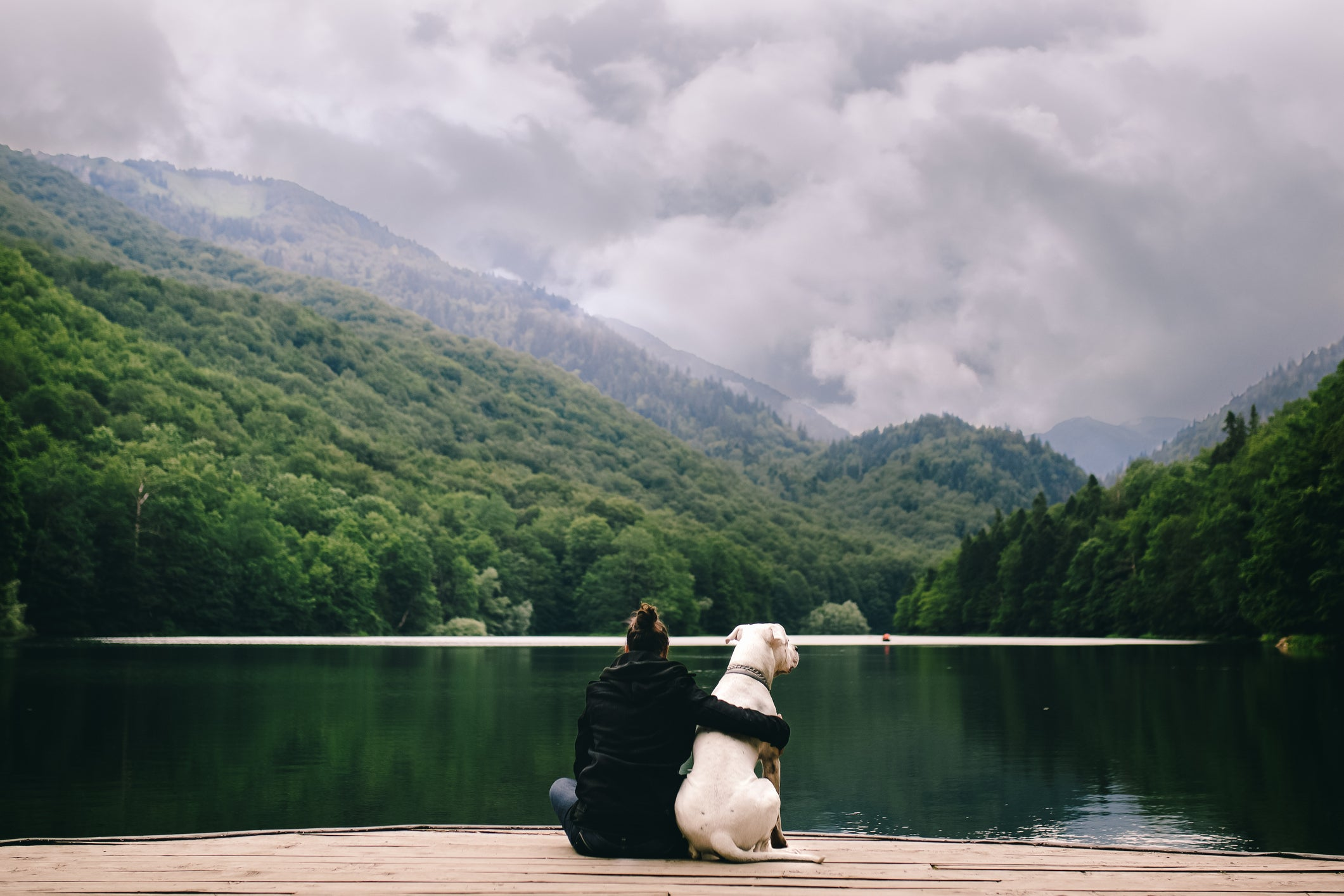A woman with her arm around he dog sitting in front of a lake.